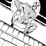 Spiderman on rooftop